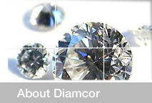 About Diamcor